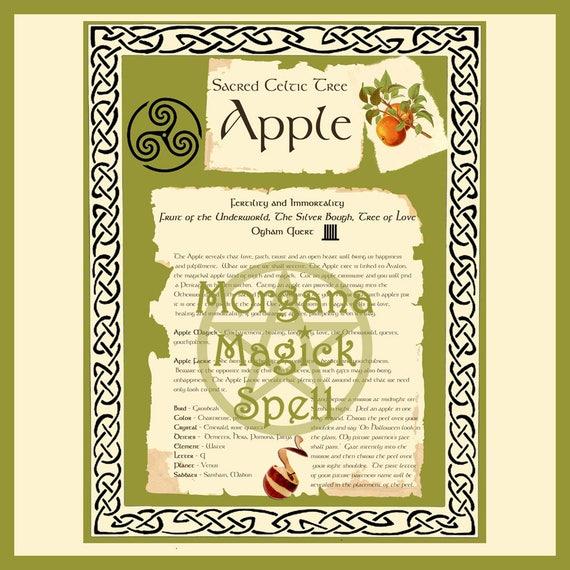 Apple Sacred Celtic Tree