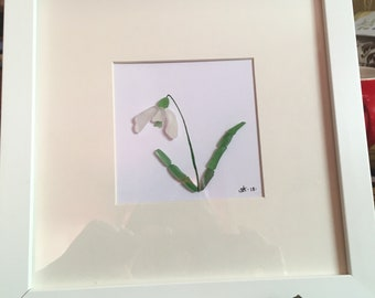 Sea glass snowdrop picture