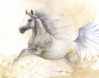 Running arabian horse, equine art, horse portrait, equestrian, cheval, original watercolor painting