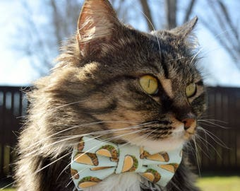 Taco collar for cat with bow, cat collar taco, taco cat collar, taco bow tie cat, taco cat bow tie collar, taco fabric, custom cat collar