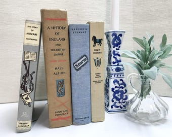 Blue and Tan Decorative Books