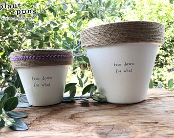 """6"""" Fern Down for What » Plant Indoor and Outdoor Pot or Planter"""