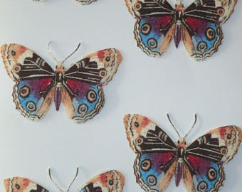 Set of magnets same multicolored butterflies