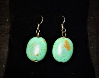 Robin's Egg Blue Turquoise Earrings