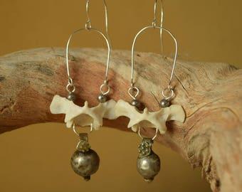 Vertebrae Real Bone Earrings