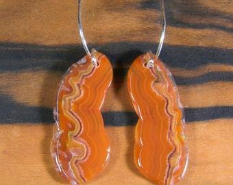 Agua Nueva Agate Earrings