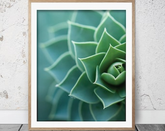 Succulent print, Succulent art, Cactus art, Botanical print, Succulent wall art, Succulent printable, Home decor, Printable art, FM-087