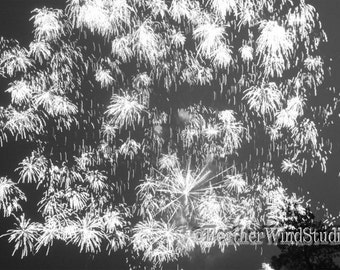 Black and White Abstract Photography | Fireworks Photo Art | Bright Flashes in the Sky | Independence Day Celebration | Fire Works Art Print