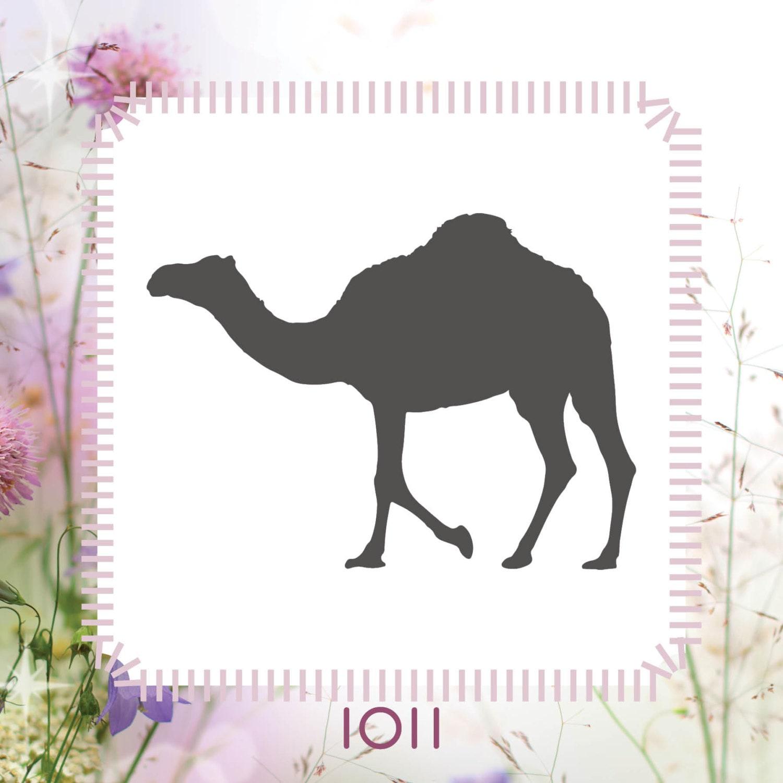 Plantilla de Stencil Animal camello nave reutilizable