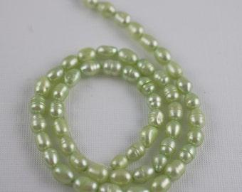 4-6mm Sellerie Mint grüne Süßwasser-Perlen - Reis-Oval-15-Zoll-Strang - 53 Perlen