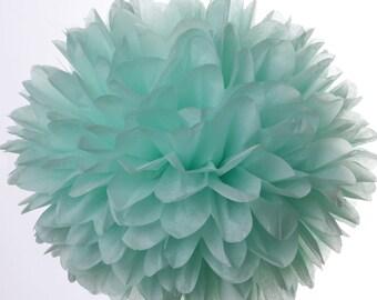 Cool Mint 1 Large tissue paper poms