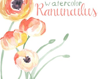 Watercolor Ranunculus Flower Clip Art for Scrapbooking Instant Download Digital Flowers Digital Clipart Commercial Use