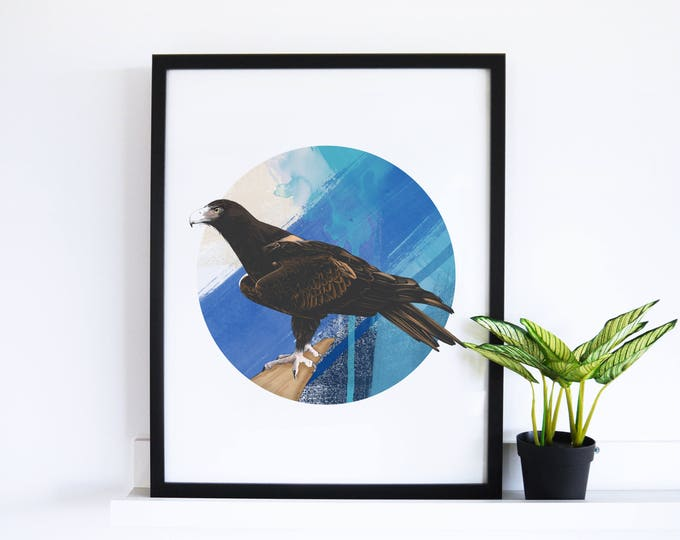 The Wedge Tail Eagle // Abstract Collection
