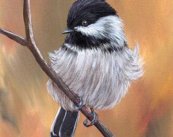Bird Art Painting Wildlife Black Capped Chickadee SFA Original hand painted acrylic bird painting by Australian Artist Janet M Graham