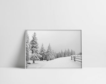 Landscape Print Winter Photography Pine Tree Forest Landscape Poster Winter Poster Downloadable Prints Instant Download Printable Wall Art