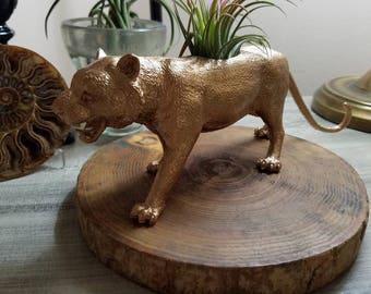 Hand Painted gold cat planter ~ cat plant pot ~ air plant pot ~ cat toy planter
