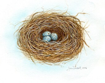 Mockingbird Trio-Signed Print of an original watercolor painting of a birds nest