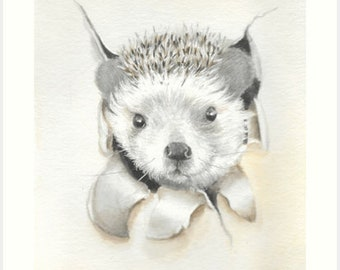 Hidden Hedgehog Watercolor painting for your Nursery Decor and Woodlands Hedgehog accessories. Hand painted with love by Helga McLeod