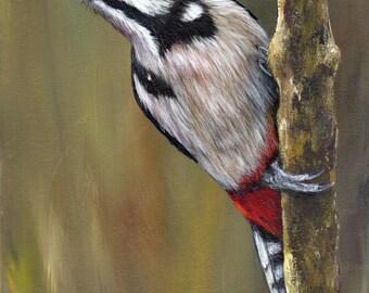 Bird Painting -  Art -  Great Spotted Woodpecker - SFA - Wildlife Painting -  Original hand painted bird acrylic painting  - Realistic Bird