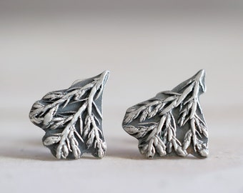 Cypress earrings. Sterling silver Cypress earrings. Silver cypress, silver leaves, cypress plant, casted plant, plant studs, leaf studs.