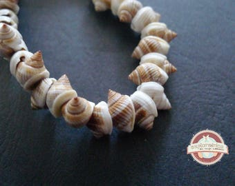 5 beige and white spiral shells ethnic 8x13mm