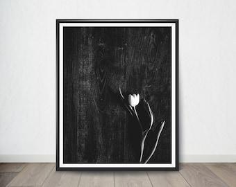 Black and White Tulip Poster, Art Print, Digital Art, Digital Art Print, Digital Artworks, Digital Print Art, Digital Art Download