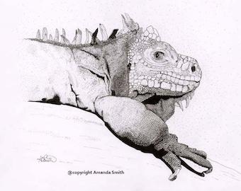 Grey Iguana - I'm Watching You Original  *free UK postage*