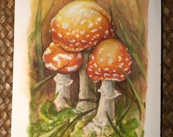 Mushrooms Original painting by Renae Taylor