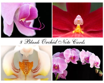 Orchid Flower Photography Art Note Cards