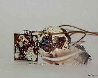 Quail Eggshell Necklace #109