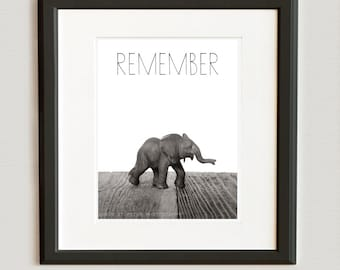 Nursery Decor, Baby animal art, Baby room ideas, Safari animals, Baby Elephant Photo Print