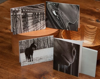 Blank Notecard Set - Four Horse Scenes - Great Gift for Horse Lovers