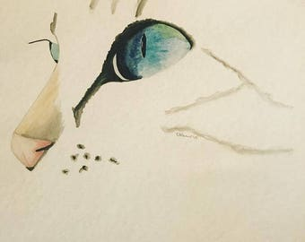 Siamese, If You Please original watercolor painting