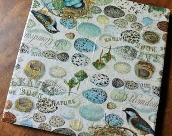 Birds & Nests Trivets