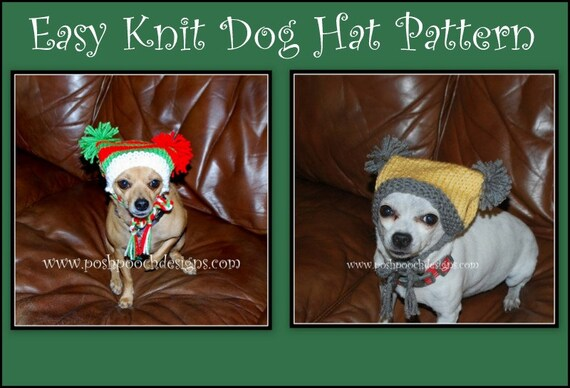 Easy Knit Dog Hat Instant Download Knitting Pattern