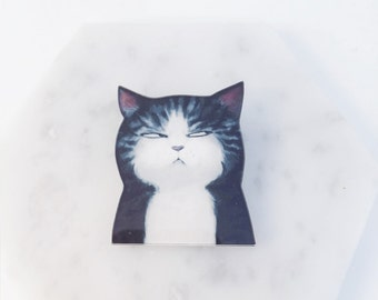 Angry cat; annoyed cat; cat slave; cat pins; angry cat pin; black cat; black cat pin