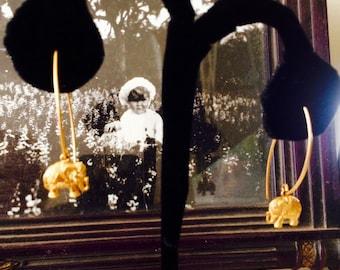 Elephants On A Wire