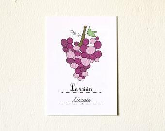 Burgundy Grapes French Fruit Drawing illustration print 5x7 Fine Art Print Autumn Fall French vines Nature vineyard retro purple