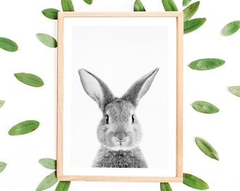 Rabbit Print, Woodland Animal Print, Nursery Animal, Bunny Printable, Bunny Rabbit, Woodland Baby Shower, Rabbit Poster, Nursery Art Animals