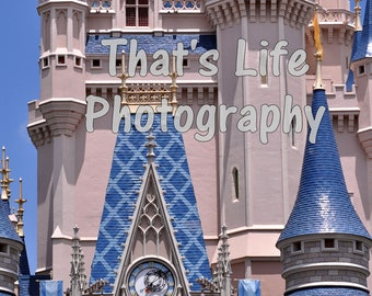 Walt Disney World Magic Kingdom Cinderella Castle Original Photography Art Image
