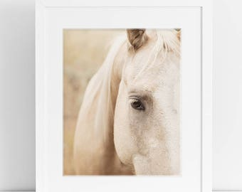 Cream Colored Horse Print, Equestrian Photography, Physical Print, Farmhouse Decor