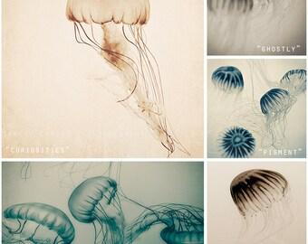 Jellyfish Art Print Set - beach decor, nature photography - jellyfish photography, ocean wall art, neutral home decor - Sea Creatures