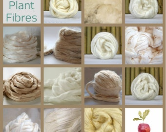 PLANT FIBRE ~ FLORA ~Tester Bag ~ 14 separately packed plant fibres ~ classroom, felting, spinning, crafting, Flax, Hemp, Ramie, Cotton