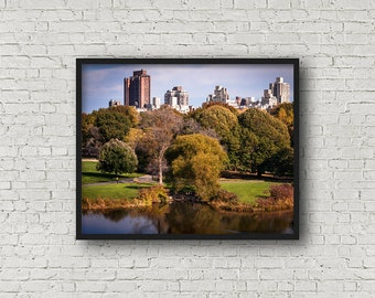 Central Park Photograph / Digital Download / Fine Art Print/ Wall Art / Home Decor / Color Photograph / New York City / Travel Photography