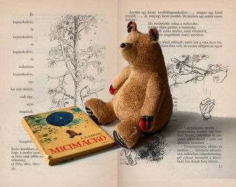 Honey Bear, Soft Brown Plush Bear, Teddy Bear, Cuddly Plush