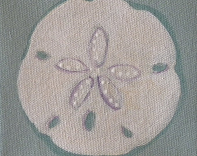 sand dollar blank greeting card