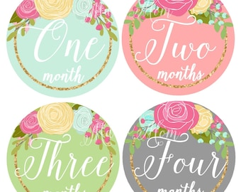 Baby Girl Monthly Stickers, Baby Month Stickers,  Roses Floral Stickers, Milestone Stickers, Baby Bodysuit Stickers, Photo Prop