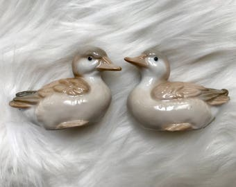 ceramic duck set
