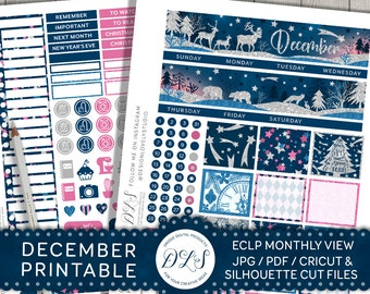 December Monthly Kit for Erin Condren, December Monthly Planner Stickers, Christmas Planner Kit, December Printable, Glitter Stickers, MV113