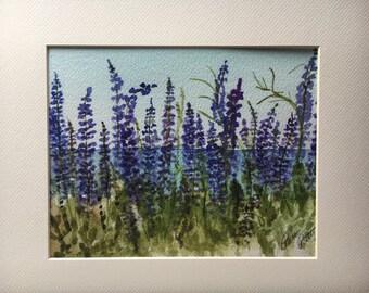 Lupine in bloom wild flowers Lake Tahoe California   Watercolor print